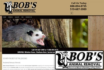 Bob's Animal Removal