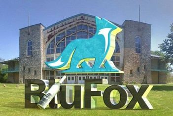 History of BluFox: Logo and Design Concept